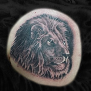 Grayscale-Lion-Chest-2-BSpickard