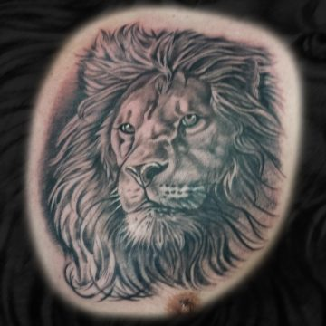 Grayscale-Lion-Chest-BSpickard
