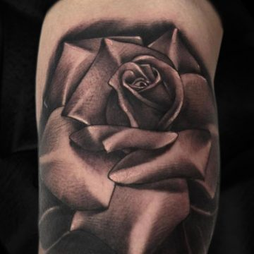 Grayscale-rose-bicep-Aragon